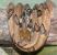 1182px-Boiga_Cynodon_Cameron_Highlands